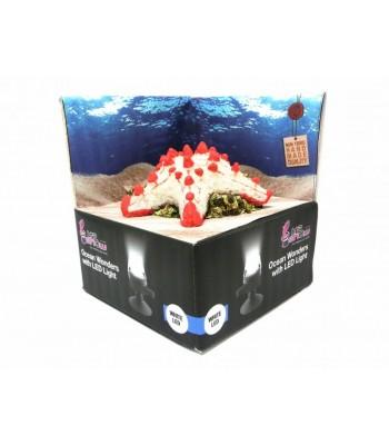 Hydor H2SHOW Készlet tengeri csillag + fehér LED